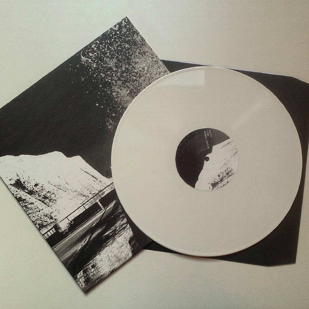 Just arrived! The Leaf Library - Daylight Versions, white awesome #vinyl .
